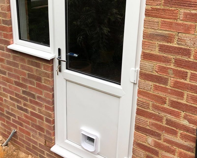 Cat Flap Installation And Fitters In Surrey