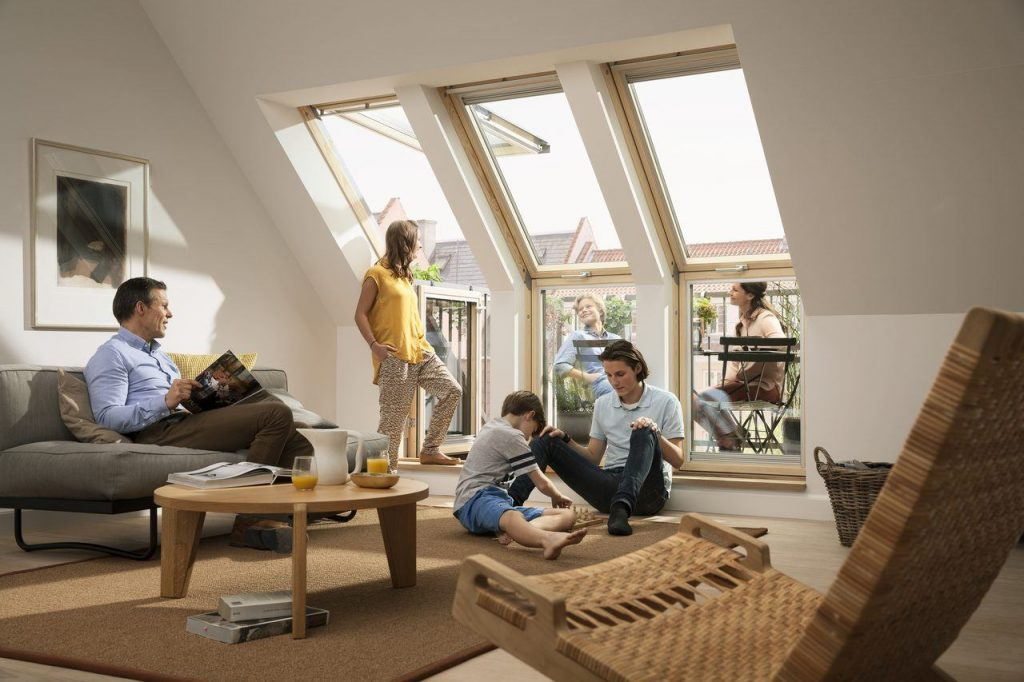 Velux Window and family