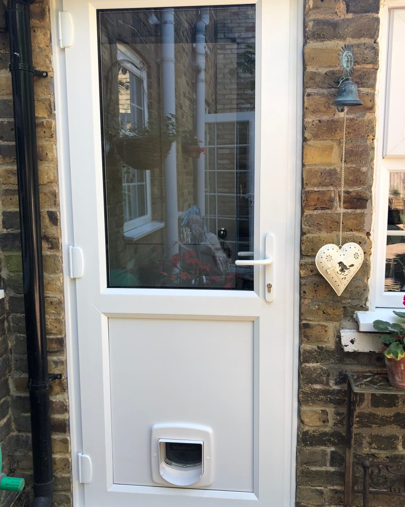 Backdoor with cat flap