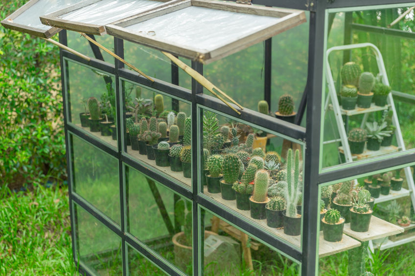 Greenhouse replacement glass