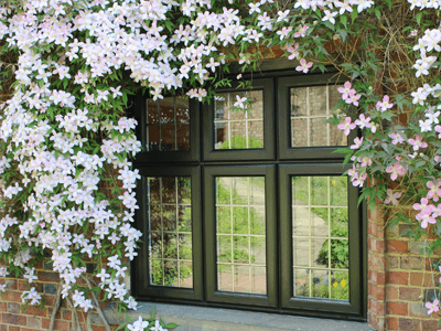 timber look windows